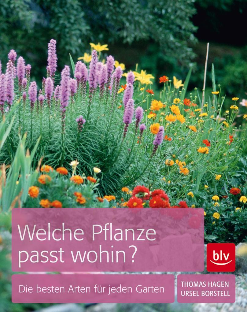 Welche Pflanze passt wohin? als eBook epub