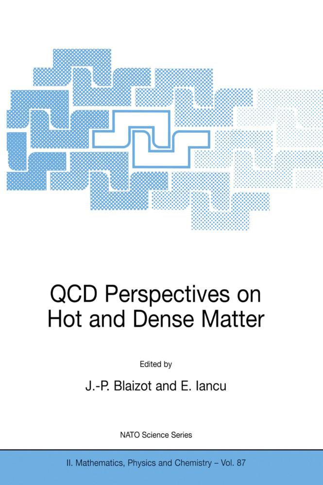 QCD Perspectives on Hot and Dense Matter als Buch (gebunden)