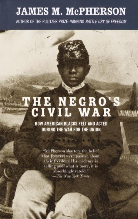 The Negro's Civil War als eBook epub