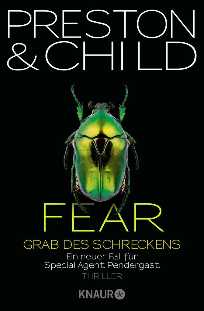 Fear - Grab des Schreckens als Taschenbuch