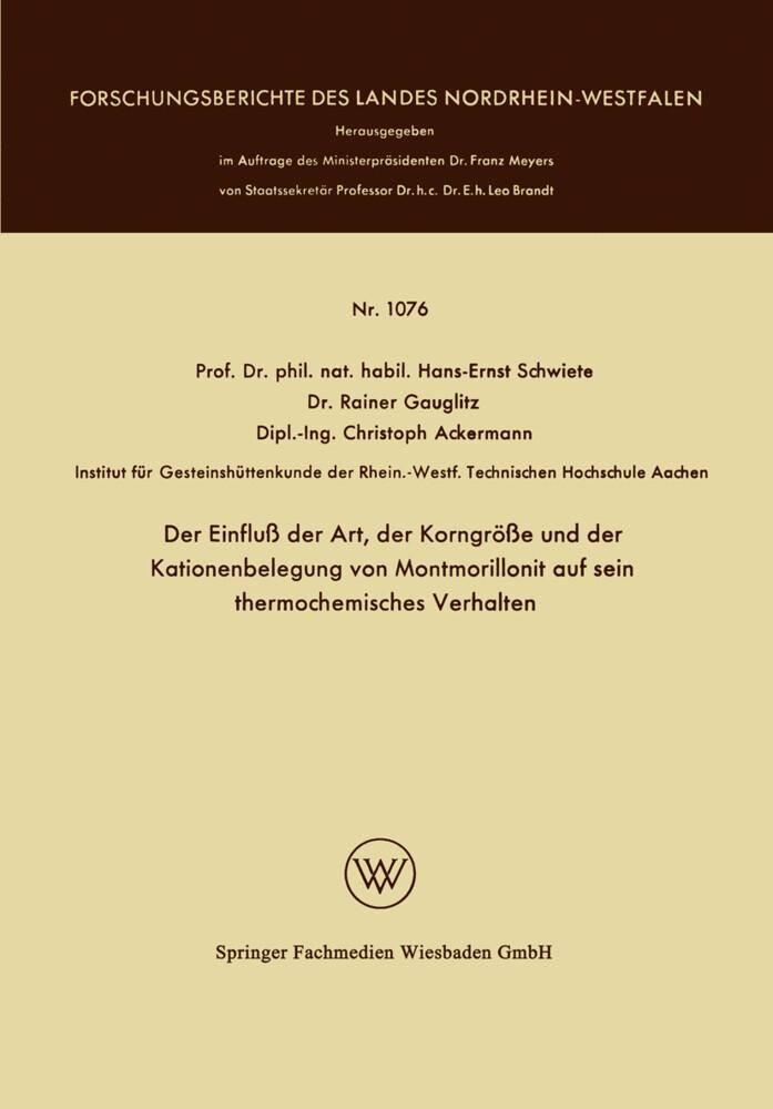 Der Einfluß der Art, der Korngröße und der Kationenbelegung von Montmorillonit auf sein thermochemisches Verhalten als Buch (kartoniert)