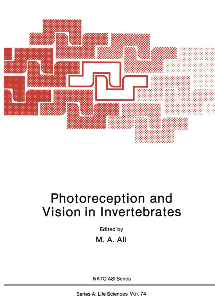 Photoreception and Vision in Invertebrates als Buch (kartoniert)