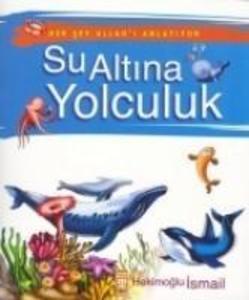 Su Altina Yolculuk als Taschenbuch