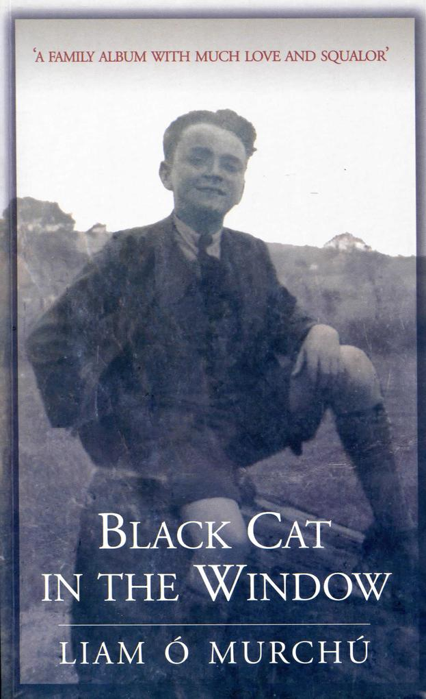 Black Cat in the Window als eBook epub