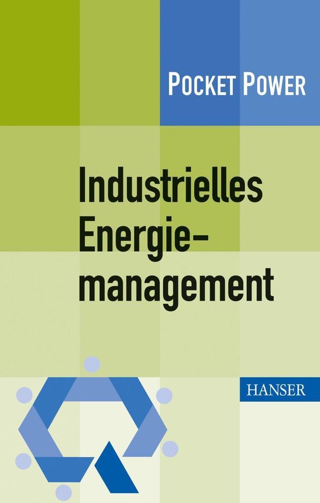 Industrielles Energiemanagement als eBook pdf