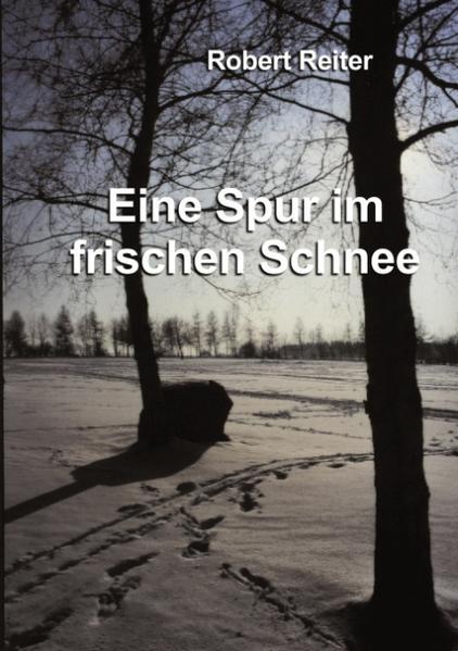 Eine Spur im frischen Schnee als Buch (kartoniert)