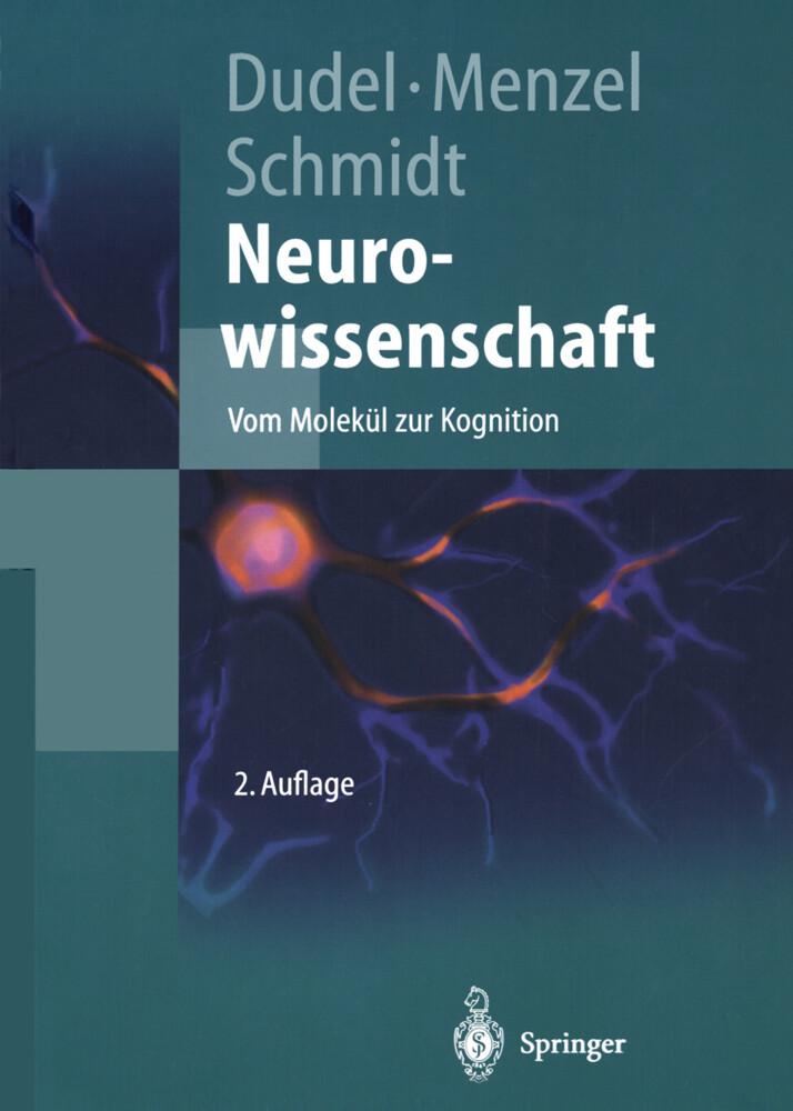 Neurowissenschaft als Buch (kartoniert)