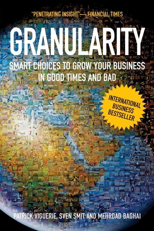 Granularity als eBook epub