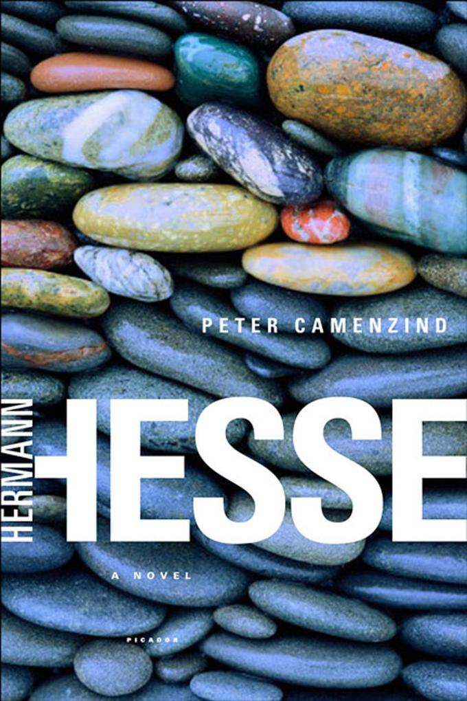 Peter Camenzind als eBook epub