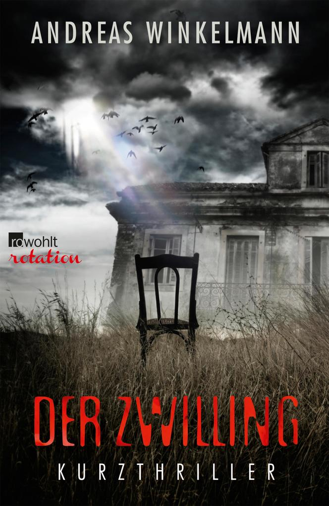 Der Zwilling als eBook epub