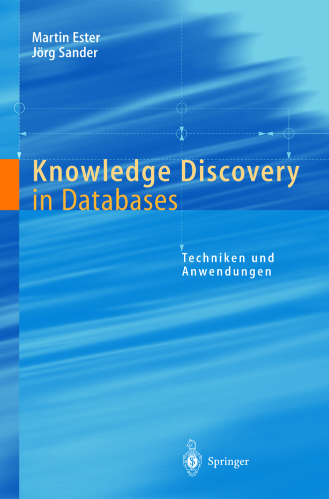 Knowledge Discovery in Databases als Buch (kartoniert)