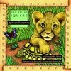African Savanna