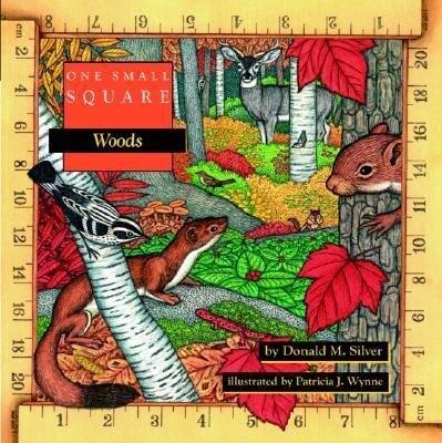 One Small Square: Woods als Taschenbuch