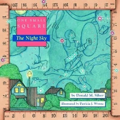 One Small Square, the Night Sky als Taschenbuch