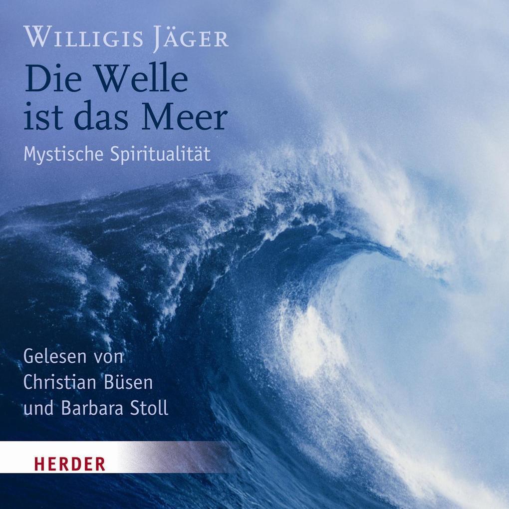 Die Welle ist das Meer als Hörbuch Download
