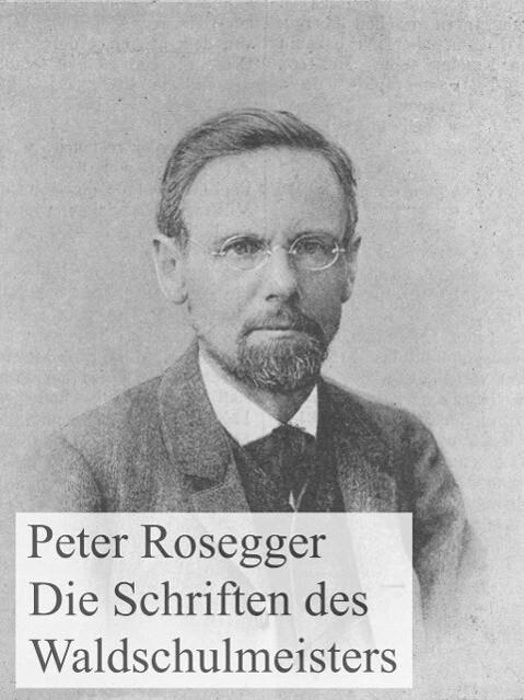 Die Schriften des Waldschulmeisters als eBook epub