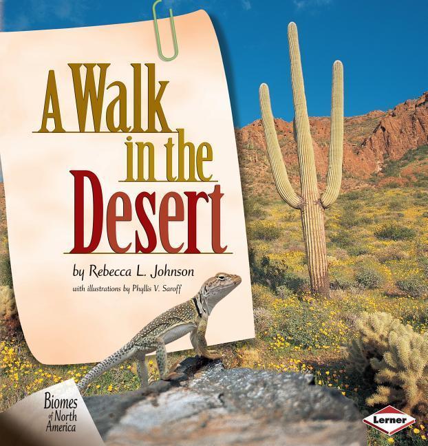 A Walk in the Desert als Buch (gebunden)