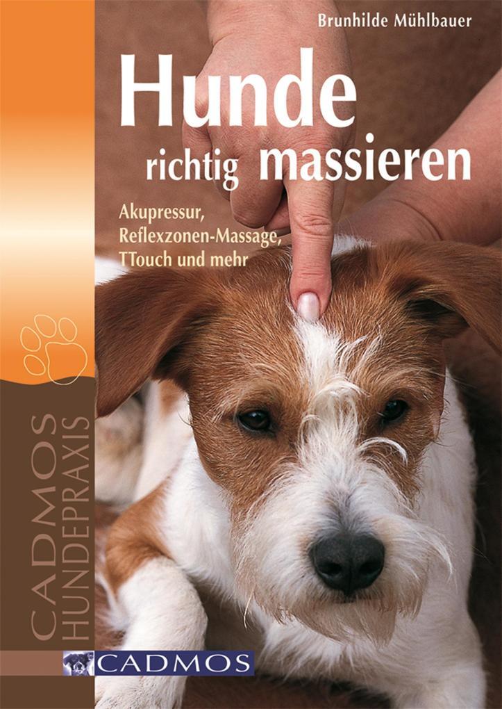 Hunde richtig massieren als eBook epub