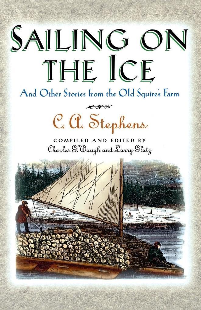 Sailing on the Ice als Taschenbuch