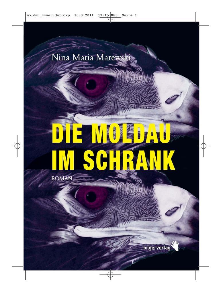 Die Moldau im Schrank als eBook epub