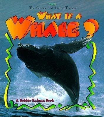 What Is a Whale? als Taschenbuch