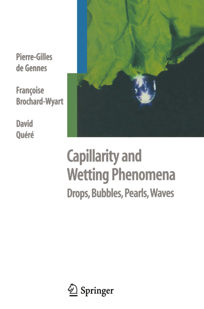 Capillarity and Wetting Phenomena als Buch (gebunden)