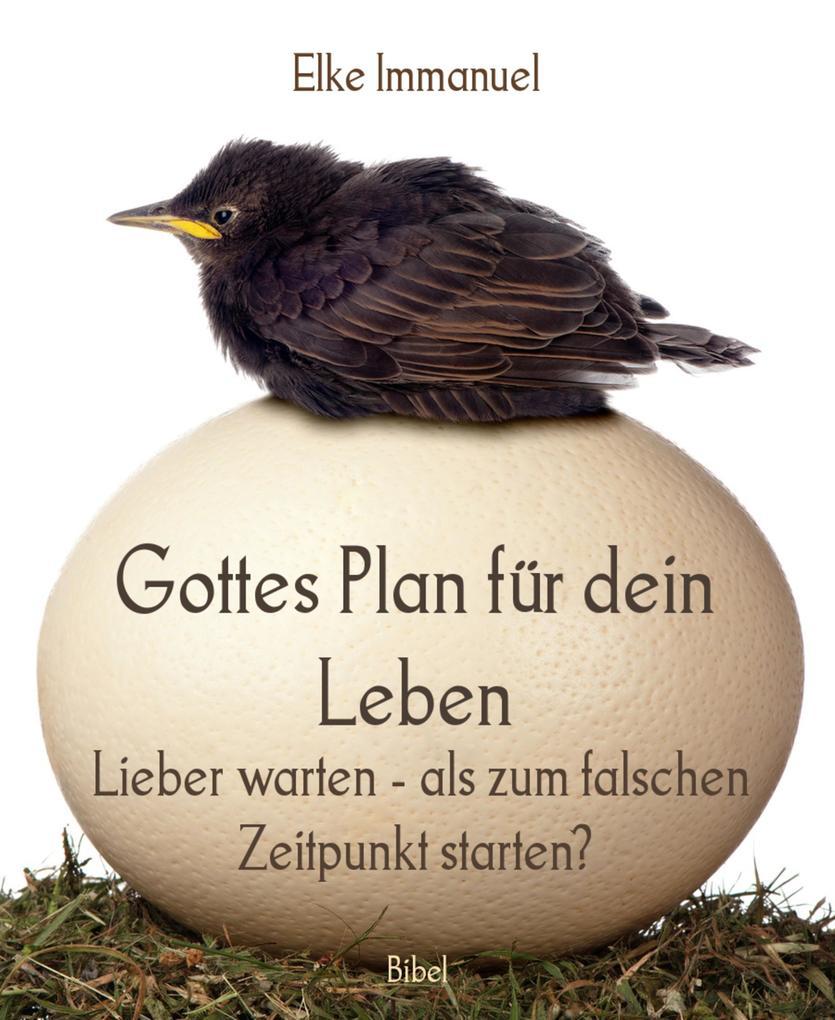 Gottes Plan für dein Leben als eBook epub