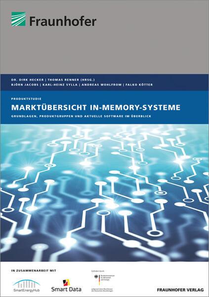 Marktübersicht In-Memory-Systeme als Buch (kartoniert)