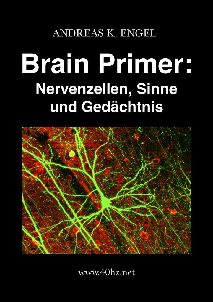 Brain Primer: Nervenzellen, Sinne und Gedächtnis als eBook epub