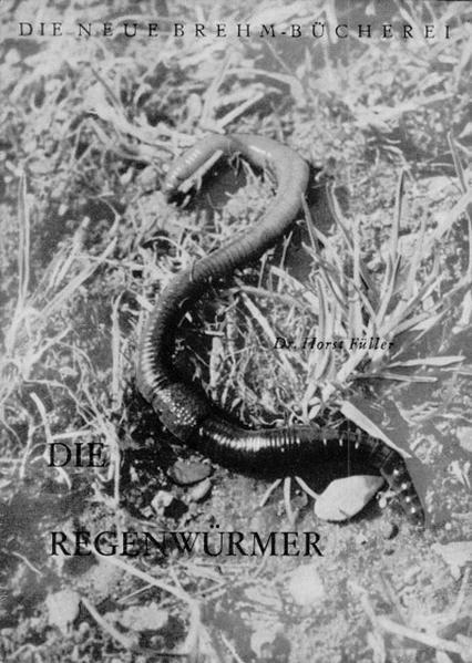 Die Regenwürmer als Buch (kartoniert)