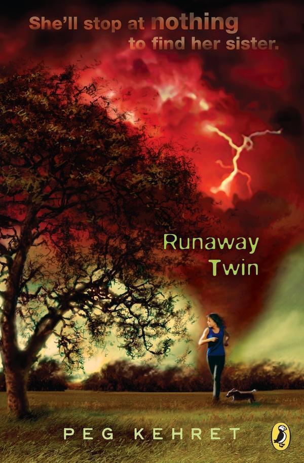 Runaway Twin als eBook epub