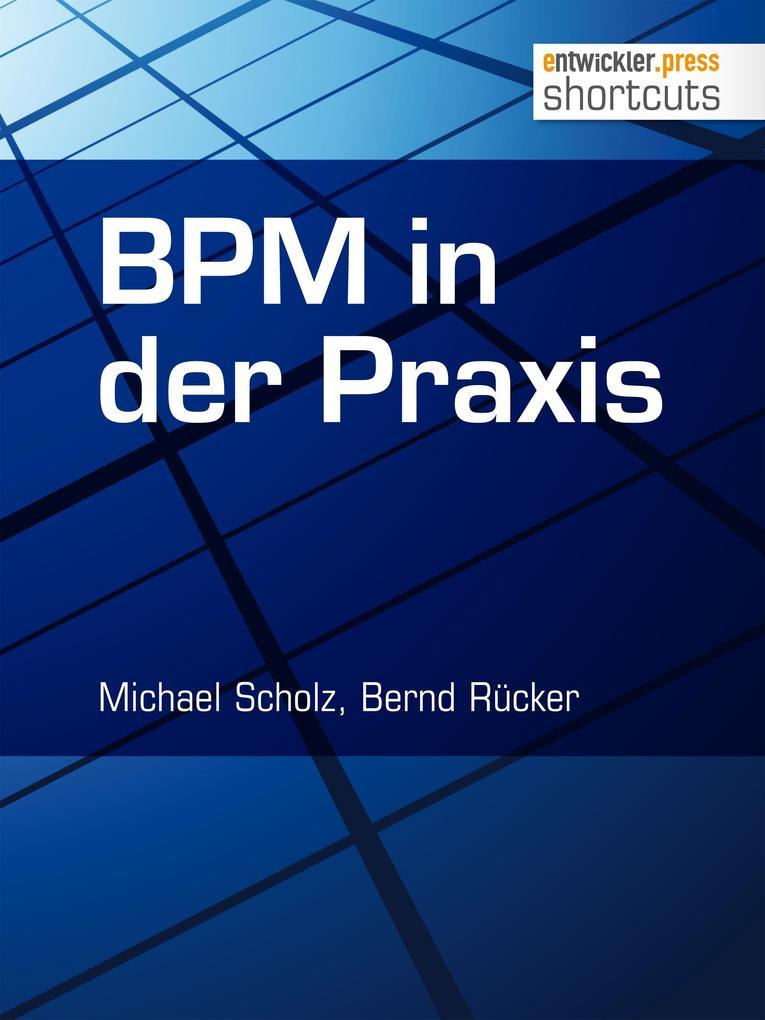 BPM in der Praxis als eBook epub