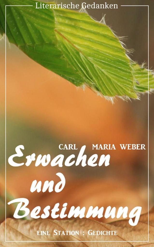 Erwachen und Bestimmung (Carl Maria Weber) (Literarische Gedanken Edition) als eBook epub