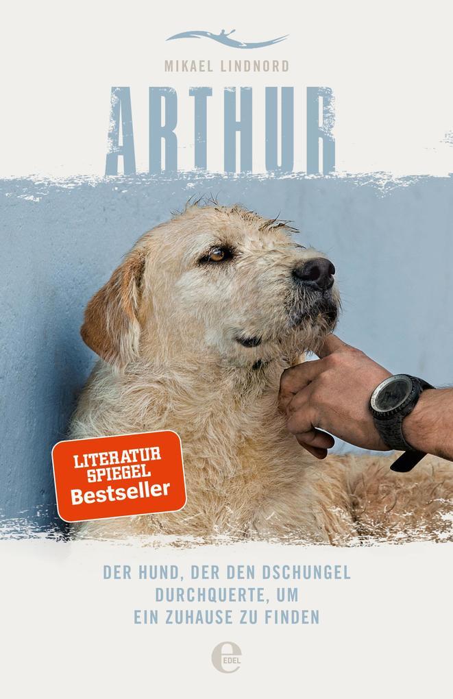 Arthur als eBook epub
