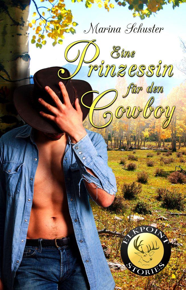 Eine Prinzessin für den Cowboy als eBook epub