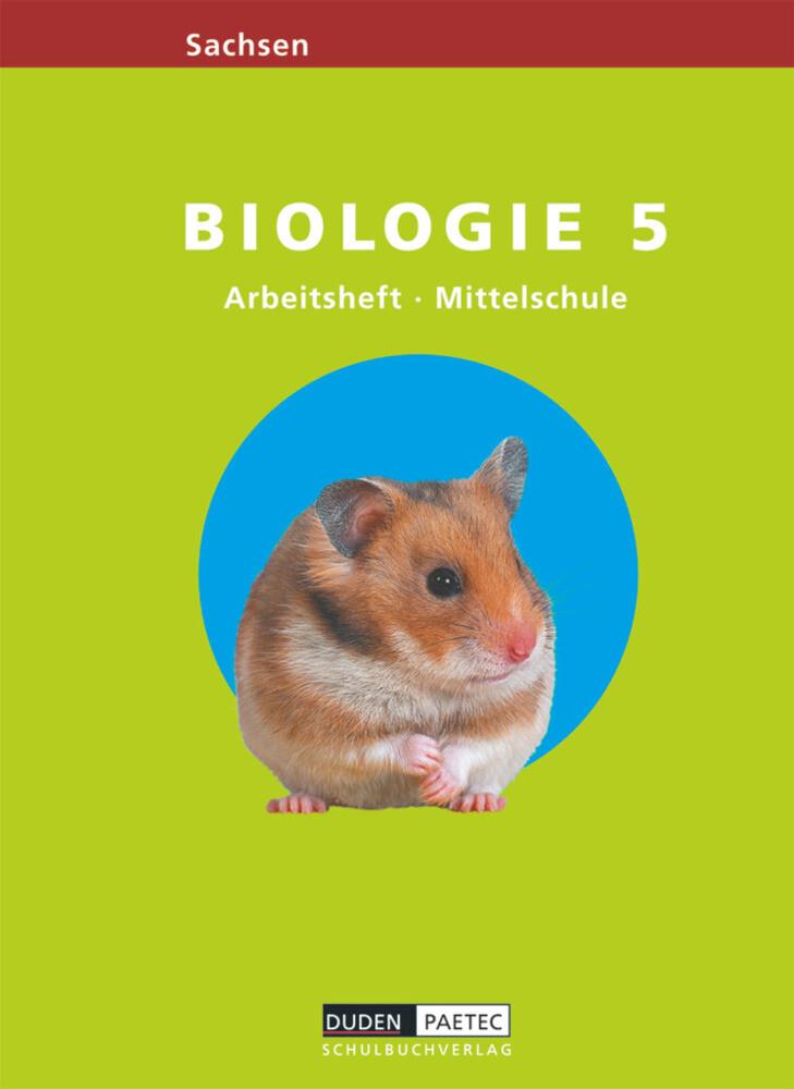 Link Biologie 5. Arbeitsheft. Mittelschule. Sachsen als Buch (geheftet)