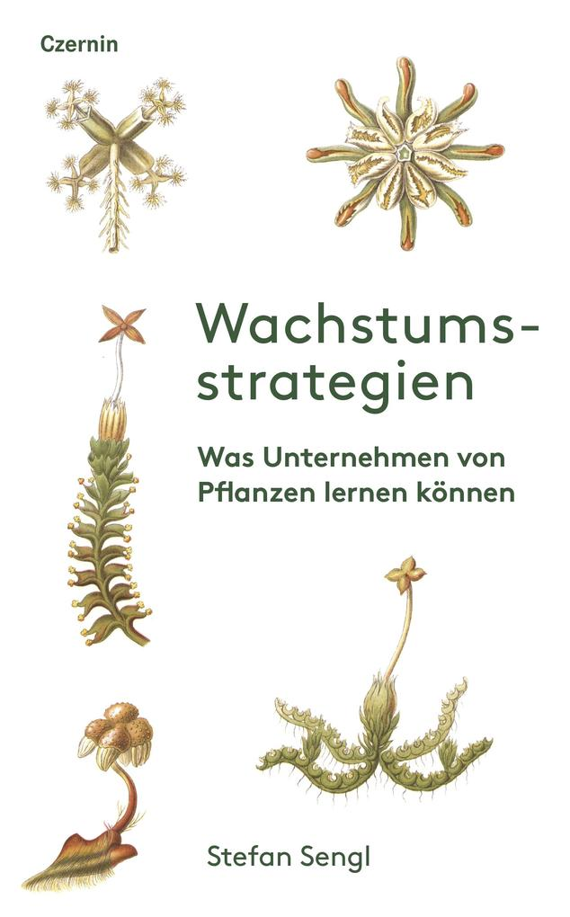 Wachstumsstrategien als eBook epub