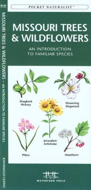 Oklahoma Trees & Wildflowers: An Introduction to Familiar Species als Taschenbuch