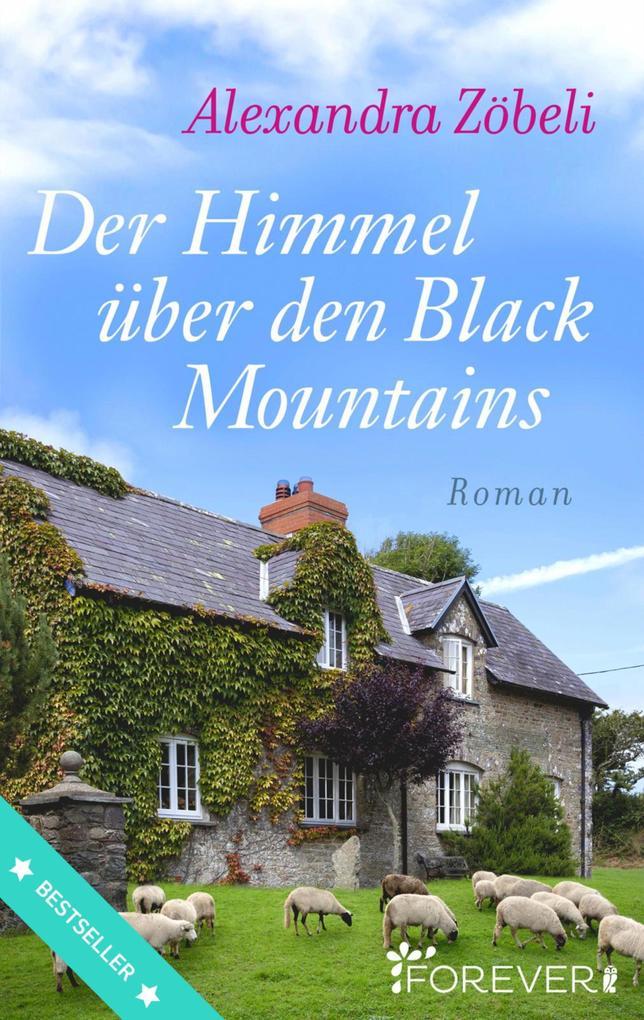 Der Himmel über den Black Mountains als eBook