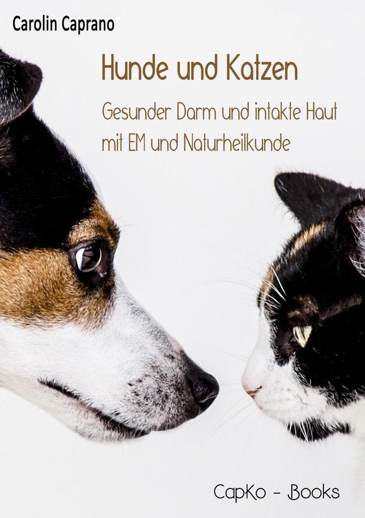 Hunde und Katzen als eBook epub