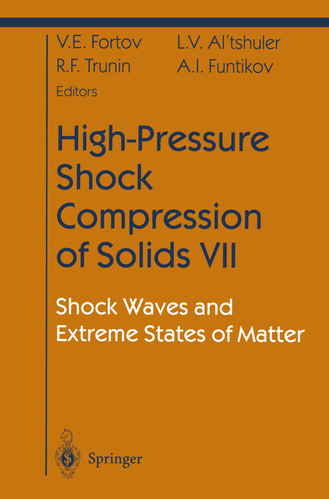 High-Pressure Shock Compression of Solids VII als Buch (gebunden)