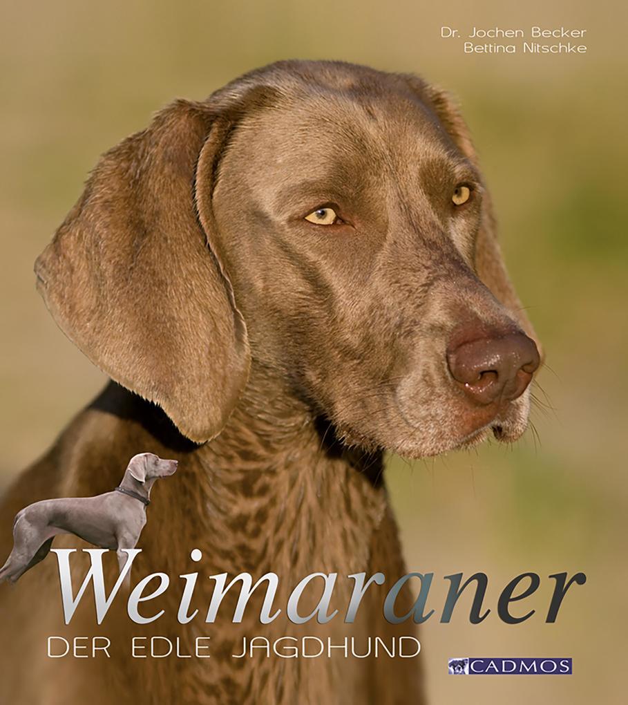 Weimaraner als eBook epub