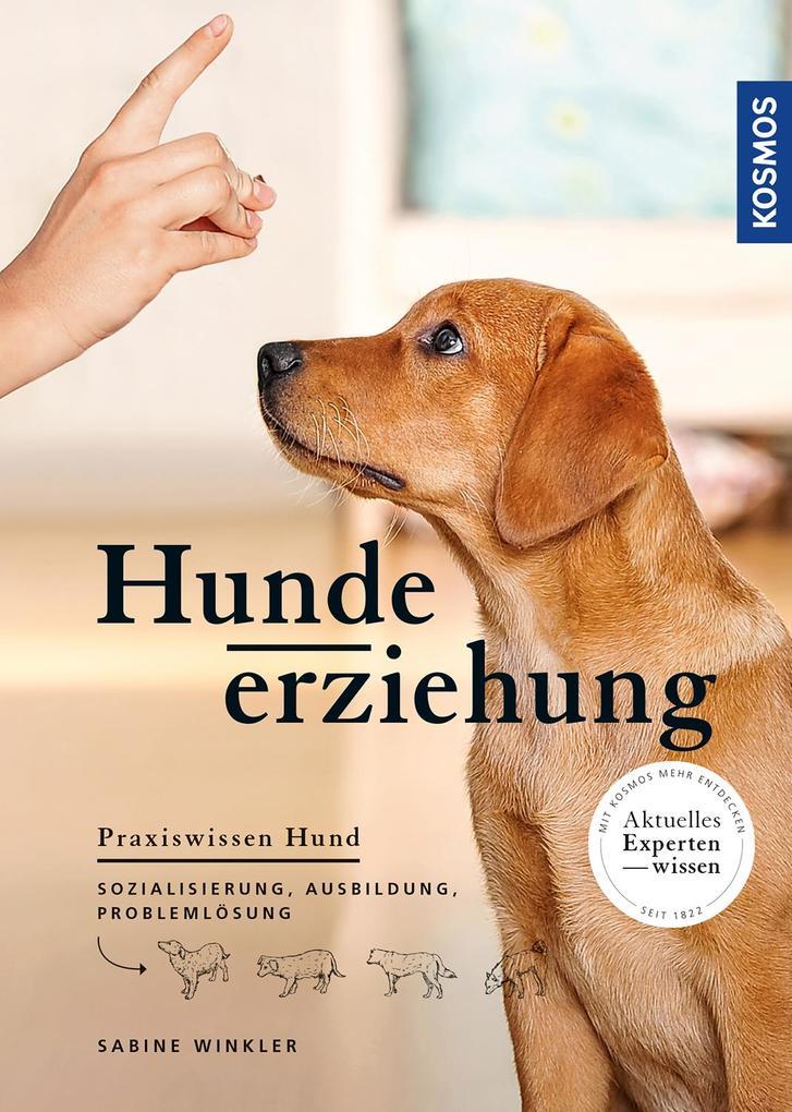 Hundeerziehung als Buch (kartoniert)