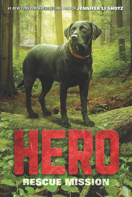 Hero: Rescue Mission als Taschenbuch