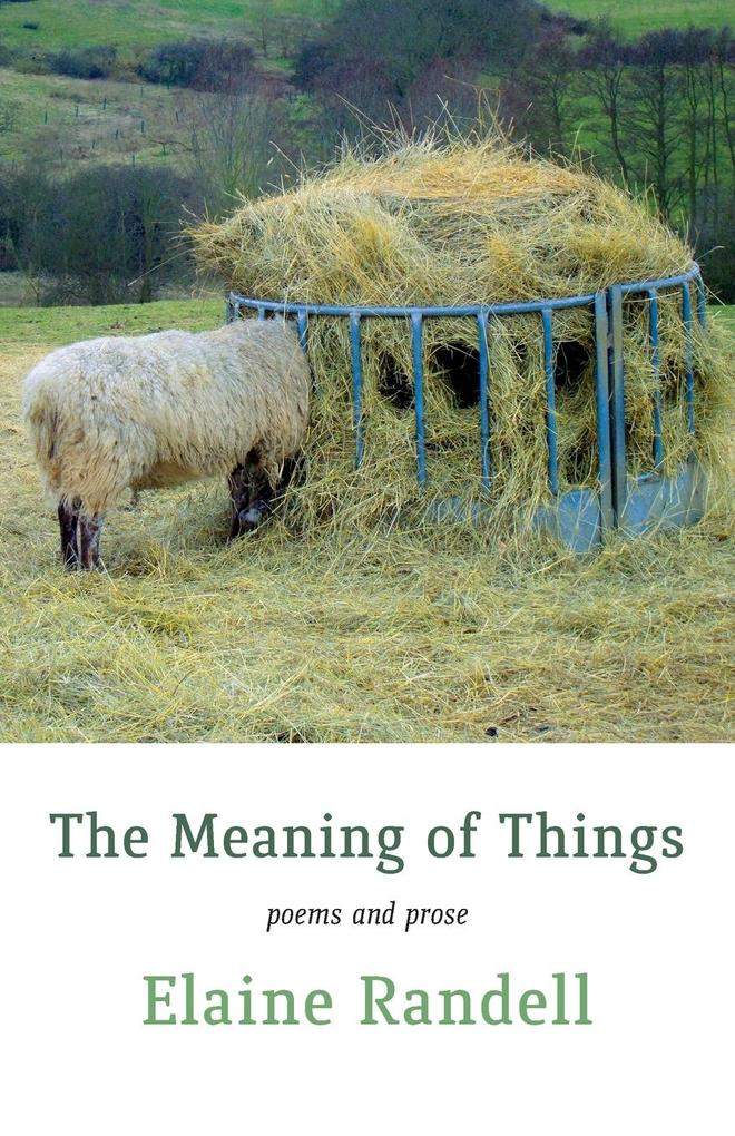 MEANING OF THINGS als Taschenbuch