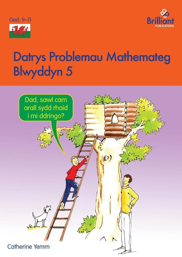 Datrys Problemau Mathemateg - Blwyddyn 5 als Taschenbuch