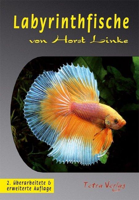 Labyrinthfische als Buch (kartoniert)