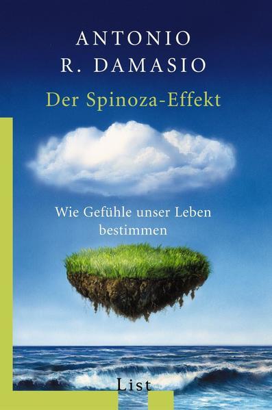 Der Spinoza-Effekt als Taschenbuch
