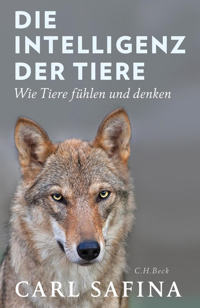 Die Intelligenz der Tiere als eBook epub