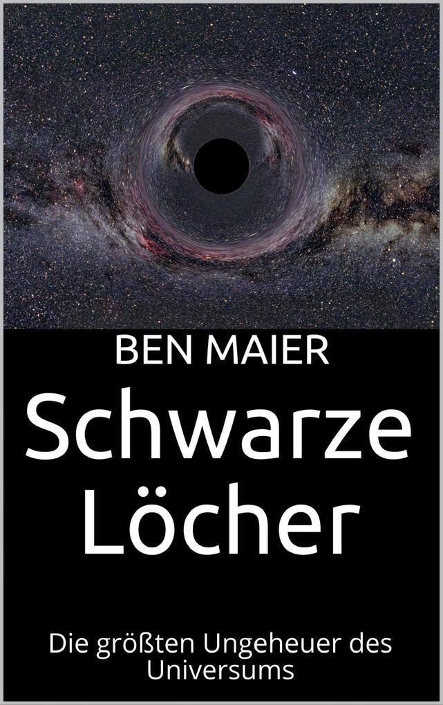 Schwarze Löcher als eBook epub